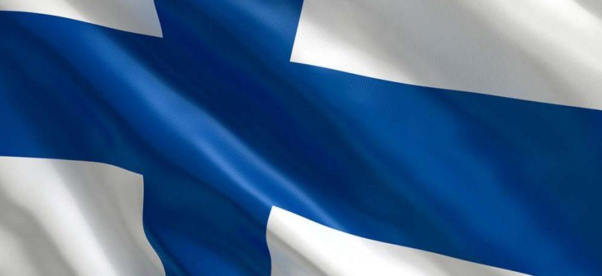 Финский бизнес готов развивать на Новгородчине сферы туризма, недвижимости, торговли и научных разработок