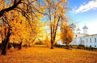 Великий Новгород, Рязань и Вологда – в топе российских городов для бюджетных поездок осенью