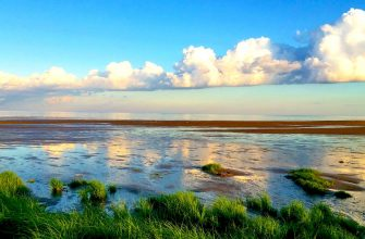 Озера Великого Новгорода